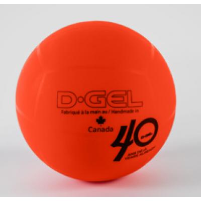 Ballon officiel Intérieur/Extérieur D-Gel
