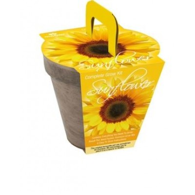 Trousse de Culture de Tournesol Nain